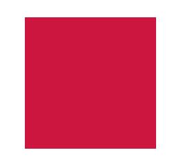 radnor-fire-1